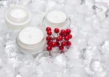 玻璃瓶子与冰围拢的红色莓果束的奶油当幼童军 免版税图库摄影