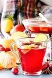 玻璃瓶子用被仔细考虑的酒 热的酒为冬天 被仔细考虑的酒,拳打,酒 果子热茶 图库摄影