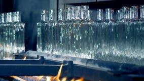 玻璃瓶的焖火过程有从传动机之后被去除的他们的 股票录像