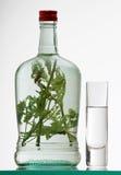 玻璃瓶草本rakia 免版税库存图片