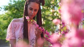 玻璃的年轻偶然加工好的女孩嗅到佐仓花和微笑入照相机 在面孔春天概念的焦点 影视素材