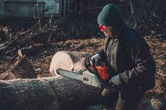 玻璃的美丽的年轻女人为冬天砍灰一棵大树在木头的 库存图片