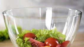 玻璃碗用里面新鲜的有机沙拉,健康营养,鲜美开胃菜 库存照片