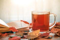 玻璃茶和在桌上的被打开的书与秋叶 阳光在窗口里 免版税库存照片