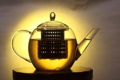 玻璃茶壶 库存图片