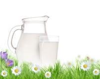 玻璃草水罐牛奶 库存照片