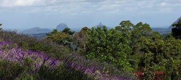 玻璃议院山内地的山景 免版税图库摄影
