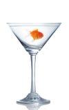 玻璃金鱼马蒂尼鸡尾酒 免版税库存图片
