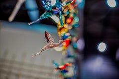 玻璃鹳飞行反对被弄脏的多彩多姿的背景 图库摄影