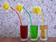 玻璃,饮料,汁液,鸡尾酒,饮料,被隔绝,寒冷,红色,白色,果子,酒精,液体,绿色,新鲜,冰,茶点,秸杆 库存照片