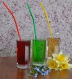 玻璃,饮料,汁液,鸡尾酒,饮料,被隔绝,寒冷,红色,白色,果子,酒精,液体,绿色,新鲜,冰,茶点,秸杆 免版税库存图片