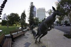 珀斯,西澳州/澳大利亚-01/20/2013 :在街道圣乔治大阳台的袋鼠雕塑 免版税库存图片