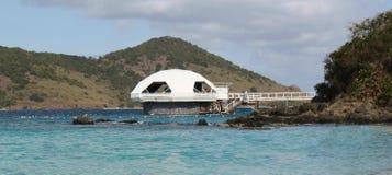 珊瑚世界水族馆,圣托马斯, U S 处女的海岛 库存照片