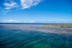 珊瑚和平的礁石 库存图片