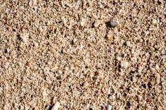 珊瑚和沙子在水下 库存图片