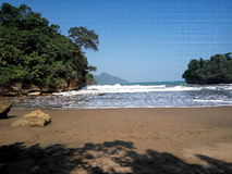 珊瑚和海滩 免版税库存图片