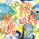 珊瑚和鱼无缝的样式 免版税图库摄影