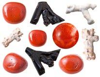 珊瑚在白色隔绝的宝石和片断 免版税库存照片