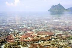 珊瑚岛礁石 免版税库存照片