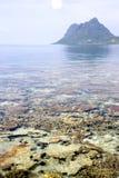 珊瑚岛礁石 免版税库存图片