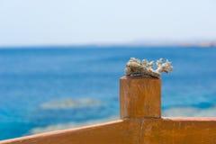 珊瑚或礁石片断在木篱芭反对蓝天 免版税图库摄影