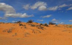 珊瑚桃红色沙丘公园 图库摄影