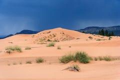 珊瑚桃红色沙丘国家公园在日落的犹他 免版税库存图片