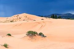 珊瑚桃红色沙丘国家公园在日落的犹他 图库摄影