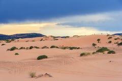 珊瑚桃红色沙丘国家公园在日落的犹他 库存照片