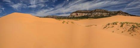 珊瑚桃红色沙丘在犹他Panoram 免版税库存图片