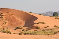 珊瑚桃红色沙丘2 库存图片