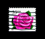 珊瑚桃红色罗斯、植物群和动物区系发布serie,大约1999年 免版税库存图片