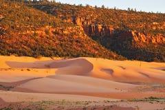 珊瑚沙丘停放桃红色状态 免版税库存照片