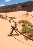 珊瑚沙丘操刀日志桃红色沙子 免版税图库摄影