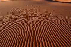 珊瑚沙丘粉红色沙子犹他 图库摄影