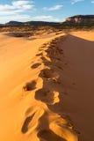 珊瑚沙丘kanab公园粉红色沙子状态美国犹他 免版税库存照片