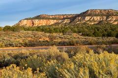 珊瑚沙丘kanab公园粉红色沙子状态美国犹他 图库摄影