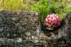 珊瑚玫瑰,戴西,新娘,婚姻的花束 免版税图库摄影