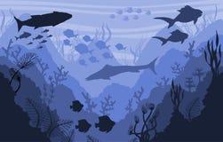 珊瑚礁和水下的野生生物,海背景 皇族释放例证