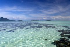 珊瑚礁在热带海运 免版税图库摄影