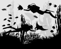 珊瑚礁的潜水者 库存照片
