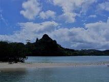 珊瑚礁自然风景风景 免版税库存图片