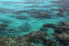 珊瑚礁水背景 库存照片