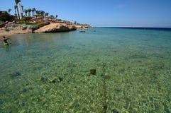 珊瑚礁 Sharm El Sheikh 红海 埃及 免版税图库摄影
