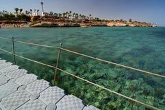 珊瑚礁 Sharm El Sheikh 红海 埃及 免版税库存图片