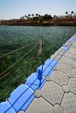 珊瑚礁 Sharm El Sheikh 红海 埃及 图库摄影