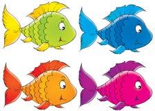 珊瑚鱼 免版税库存照片