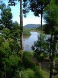 珍妮湖,彭亨,马来西亚 免版税库存图片