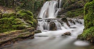 珍妮特的Foss瀑布- Malham,约克夏山谷,英国 库存照片