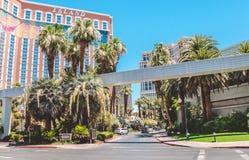 珍宝海岛 在小条街道上的豪华著名赌博娱乐场在拉斯维加斯,假期在拉斯维加斯 图库摄影